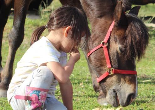 """""""Pferde für unsere Kinder e.V.""""-Projekt: Bundesweite Leuchttürme"""