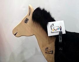 Pferde für unsere Kinder e.V. bei der didacta in Köln