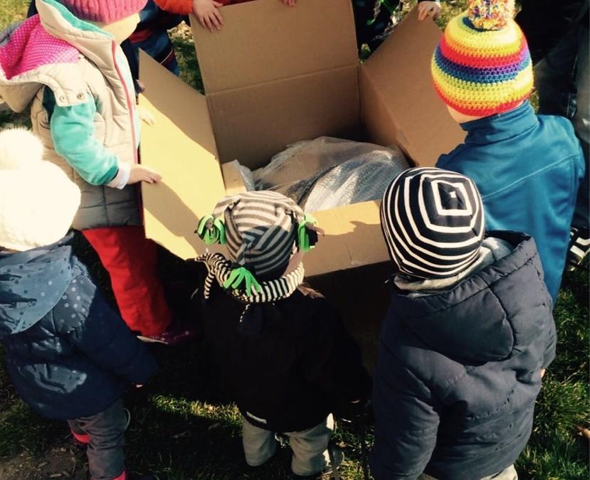 Holzpferdespende an die Kinderkrippe Käferkiste