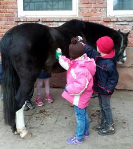 Erster Projekttag der Kita Das Nest bei Pony Eros in Kleinseelheim März 2016