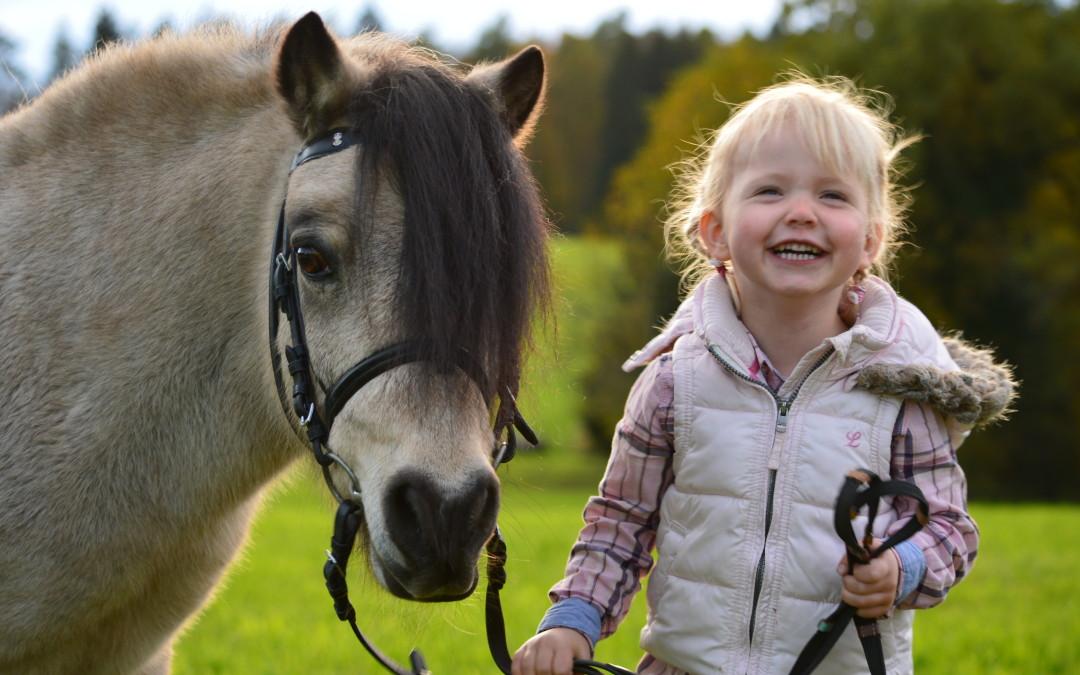 """""""Pferde für unsere Kinder e.V.""""  feiert sein 1-jähriges Jubiläum"""
