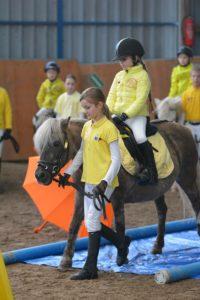 Kleine Kinder, kleine Ponys – gemeinsam erfolgreich lernen – Ulrike Mohr