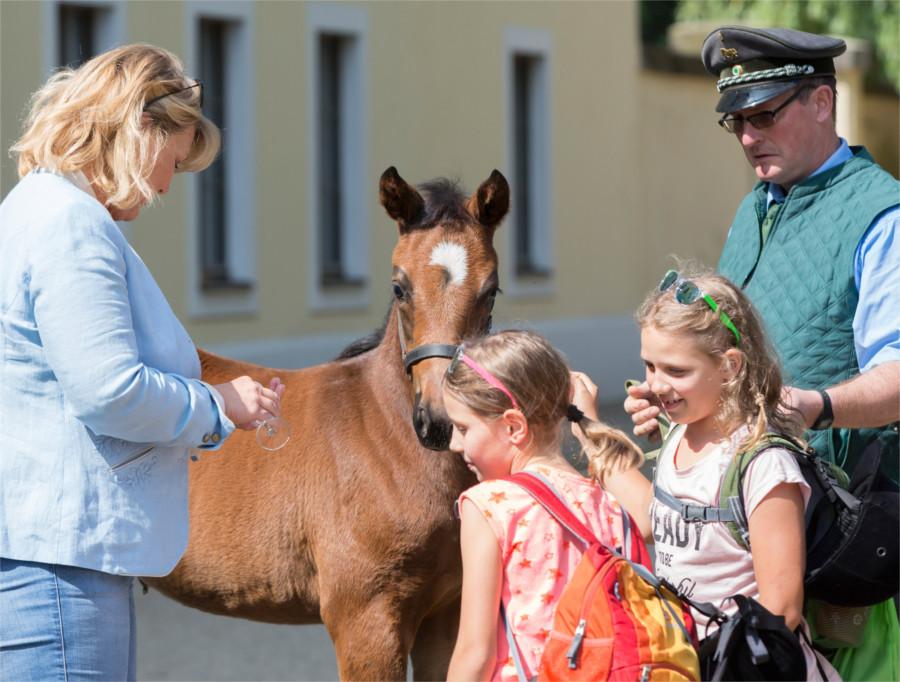 Kindertag_Hauptgestuet-Graditz_Fohlentaufe_Sächsische_Gestütsverwaltung