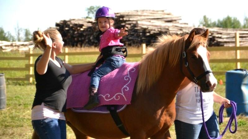 Aufsteiger – Therapeutische Konzepte unter Einbezug des Pferdes