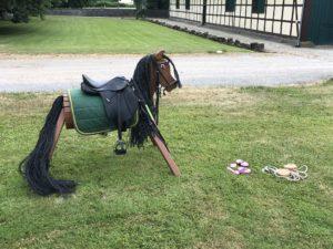 Pferde für unsere Kinder e.V. - Pferdeerlebnistag Rittergut Hofspiegelberg
