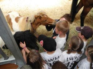 Kinder und Ponys auf dem Gestüt von Lisa und Thomas Müller