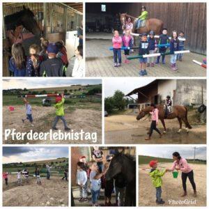 Pferdeerlebnistag Foto-Collage Mayer 2018 - Pferde für unsere Kinder e.V.
