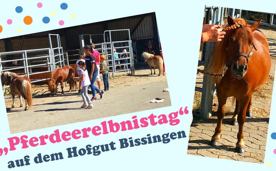 """""""Pferdeerelbnistag"""" auf dem Hofgut Bissingen"""