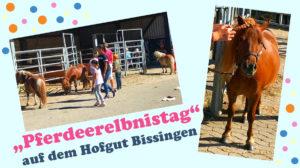 Pferdeerlebnistag Hofgut Bissingen - Pferde für unsere Kinder e.V.
