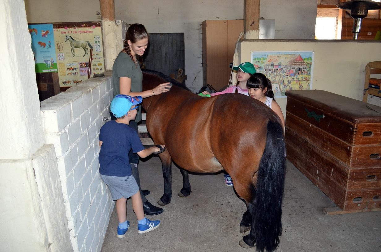 Pferdeerlebnistag KiGa Nikolinchen, Hof Ogriseck - Pferde für unsere Kinder e.V.
