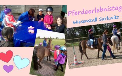 """""""Pferdeerlebnistag"""" im Wiesenstall Sarkwitz"""