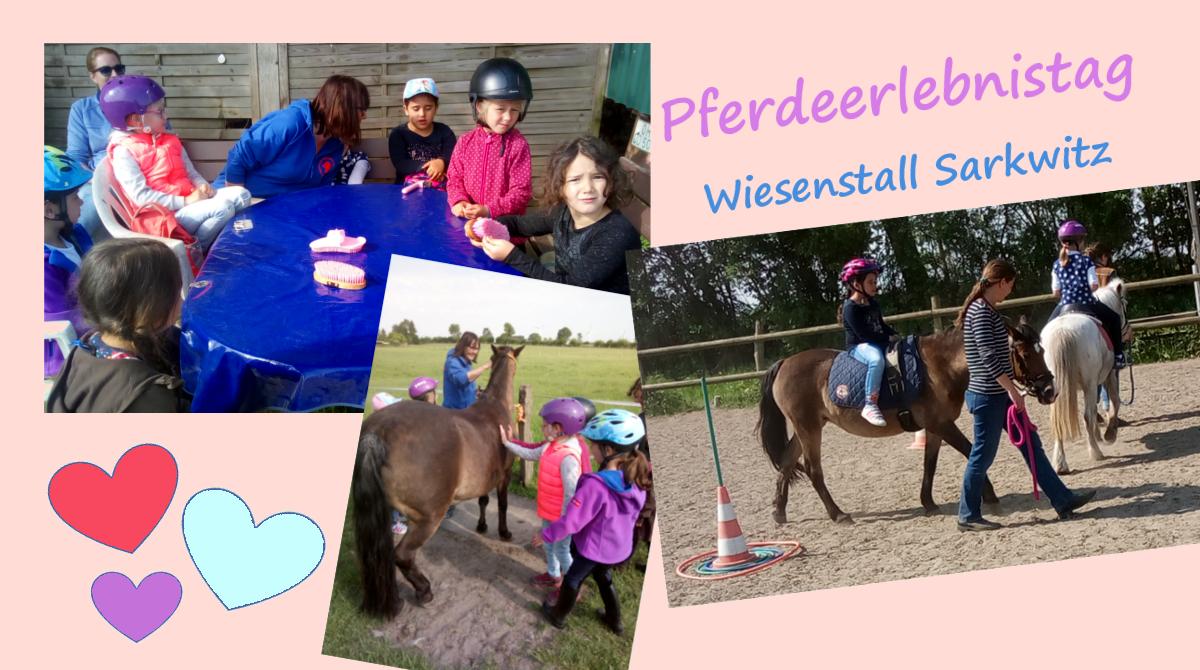 Pferdeerlebnistag Wisenstall Sarkwitz - Pferde für unsere Kinder e.V