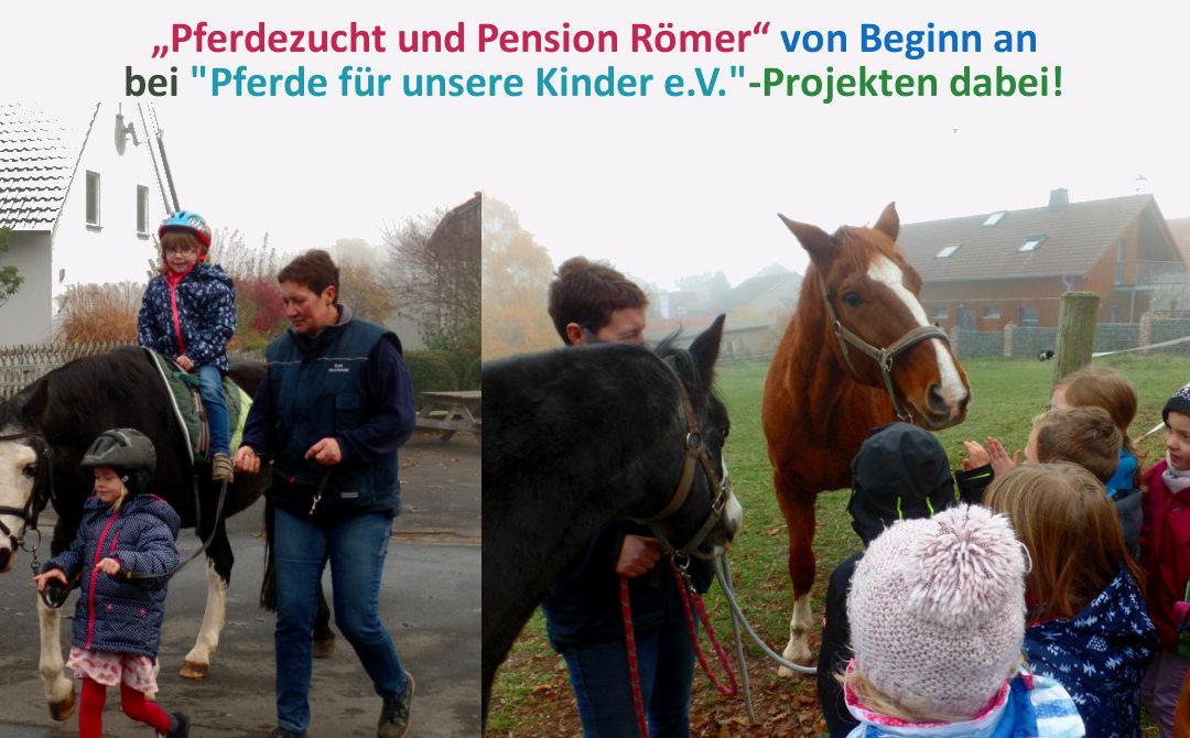 Pferdezucht und Pension Römer lässt Kinder Pferde erleben