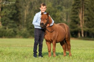 Lena & Linus, Kathrin Rheinl.-Mix, Bilder Larissa Kohl 2018 (4) - Junge hält Pony im Arm