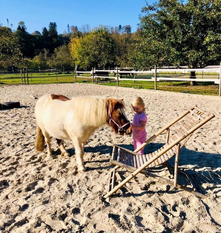 Mädchen hält Pony fest