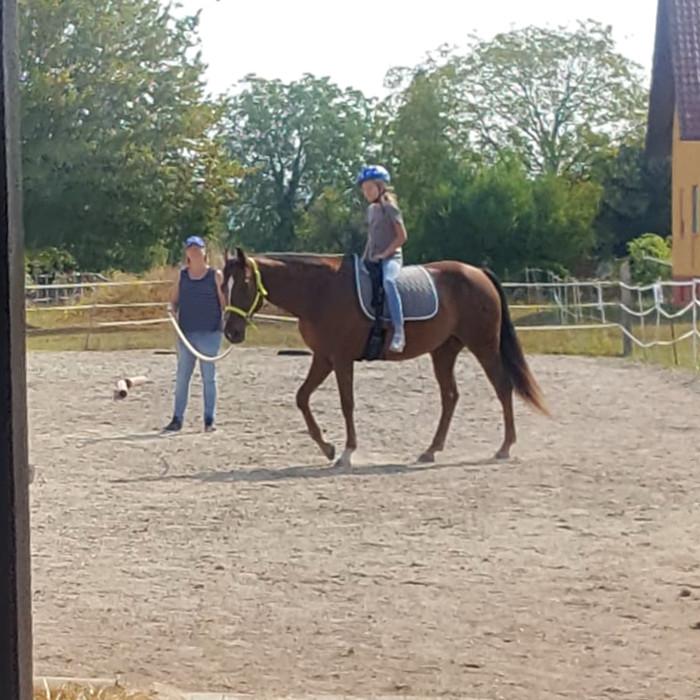 Pferdeerlebnistage Kessy's Pferdeclub - Pferde für unsere Kinder e.V. (III)