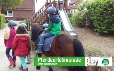 """""""Pädagogik und Förderung mit Pony und Muli"""" ermöglicht """"Pferdeerlebnistage"""""""