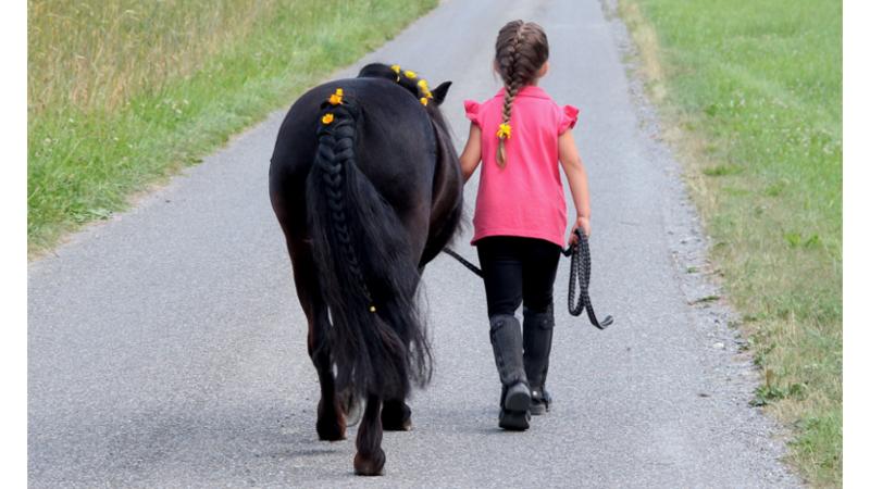 Ponyparadies Schlier – Begegnungshof für Mensch und Tier!