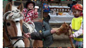 Pferdeerlebnistag Karneval Keller Tanja