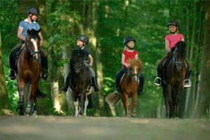 Vier Kinder reiten mit ihren Ponys im Wald