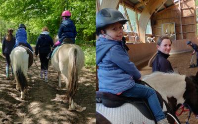 Den Pferden ganz nah beim Kindertag auf dem Gestüt Floggensee