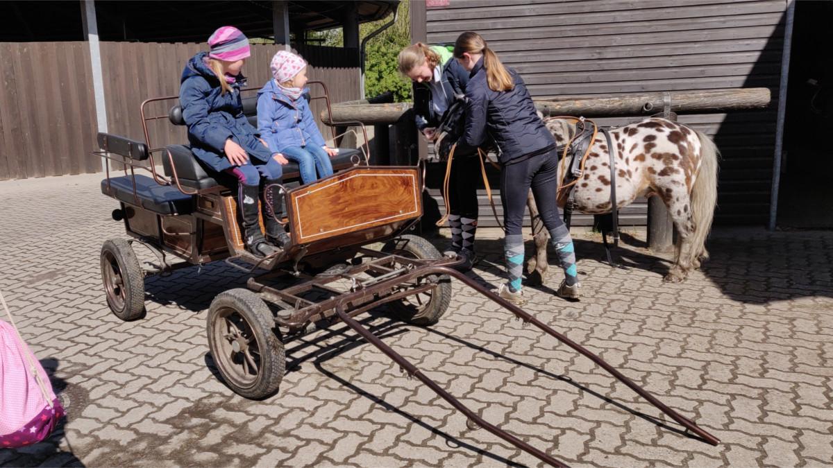 PfuKeV-Kindertag Gestüt Floggensee 2019 (3)