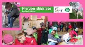 Reiterhof Walz Pferdeerlebnistage PfuKeV