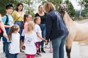 2019-06-22 PfuKeV Eltern-Kind-Tag DM Schwaiganger Oliver_Fiegel - Kinder und Pony (II)