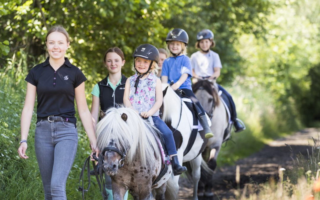 """""""Pferde für unsere Kinder e.V."""" sucht Teamleiter für das """"Pferdecamp"""" 2019 / 2020"""