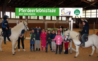 Pferdeerlebnistag des Zucht- und Ausbildungsstalls Honold