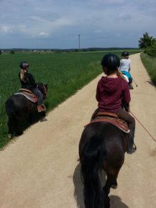Pferde für unsere Kinder e.V.-Interview Zwergen-Ranch und Outdoor-Kindergarten Göhren 2019 (4)