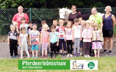 Pferdeerlebnistag der Fahrgemeinschaft Peine und Umgebung e.V.