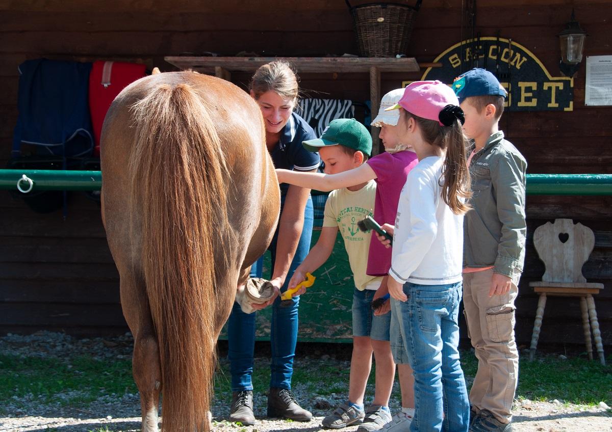 PfuKeV-Pferdeerlebnistag Reitschule Lena Bierling (11)