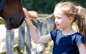 Kind streichelt Pferd - Pferde für unsere Kinder e.V. - c Thomas Hellmann (1200x670)