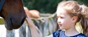 Kind streichelt Pferd - Pferde für unsere Kinder e.V. - c Thomas Hellmann
