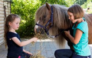 Kinder füttern Pony - Pferde für unsere Kinder e.V. - c Thomas Hellmann (1200x670)