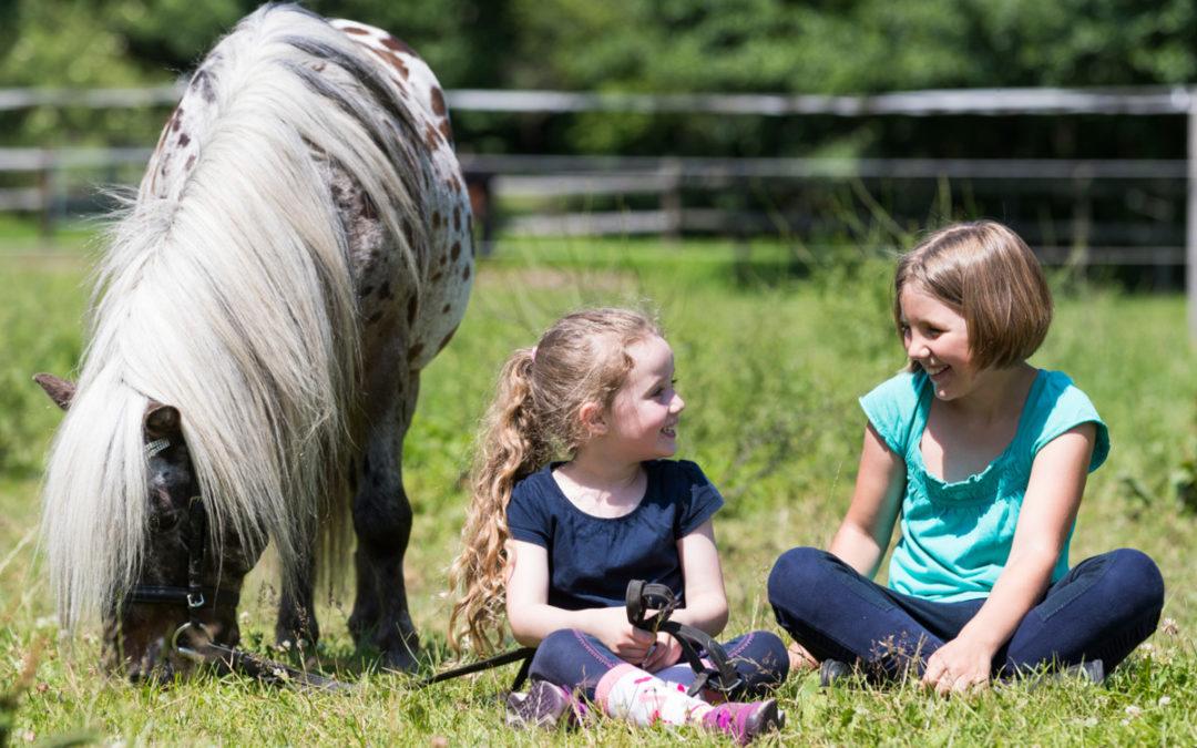 """""""Pferde für unsere Kinder e.V."""" -WEIHNACHTSAKTION: Kindern Zeit mit Pferden schenken!"""