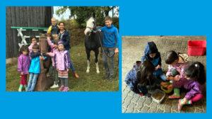 Pferde für unsere Kinder e.V. - 1. Projekttreffen 2019 Pferdehof Römer-Stauber Kleinseelheim
