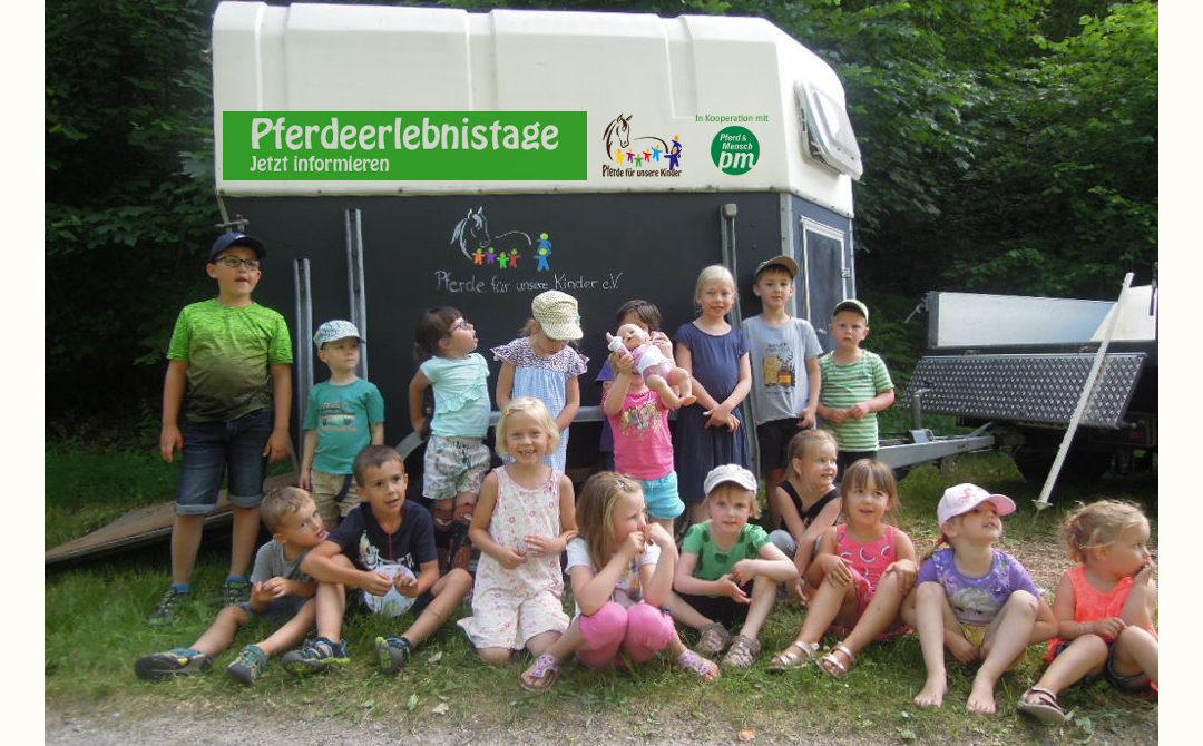 Pferdeerlebnistag in Bad Rippholdsau-Schapbach