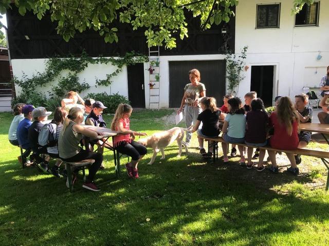 Pferde für unsere Kinder e.V. Pferdeerlebnistage - Andrea Zender Erlebnishof Wies (2)