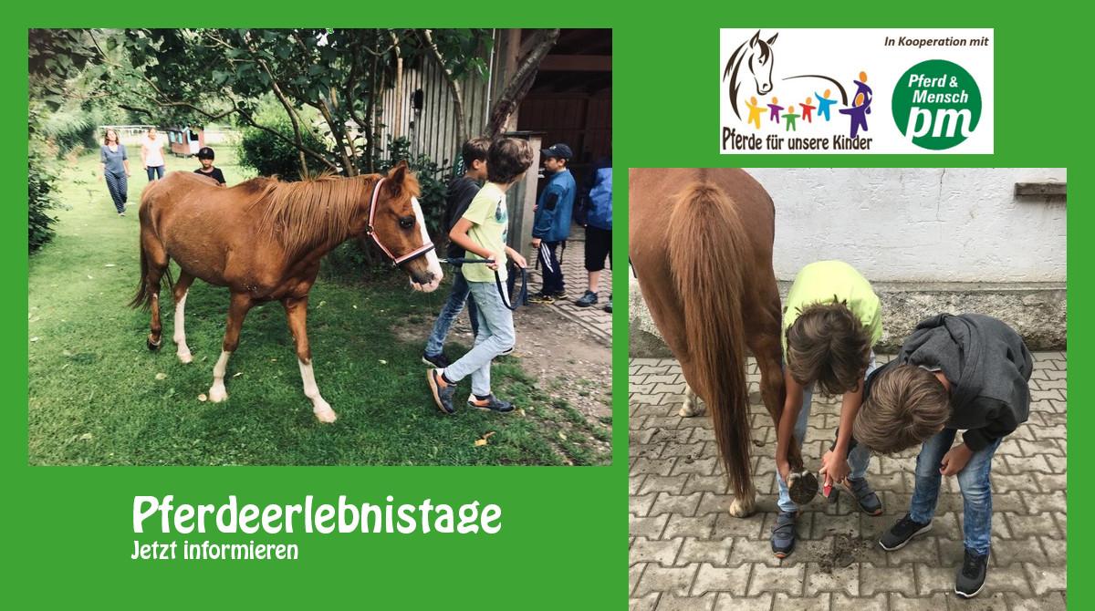 Pferde für unsere Kinder e.V. Pferdeerlebnistage - Andrea Zender Erlebnishof Wies (4)