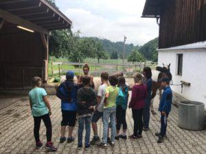 Pferde für unsere Kinder e.V. Pferdeerlebnistage - Andrea Zender Erlebnishof Wies