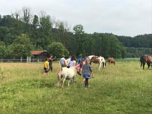Pferde für unsere Kinder e.V. Pferdeerlebnistage - Andrea Zender Erlebnishof Wies (8)