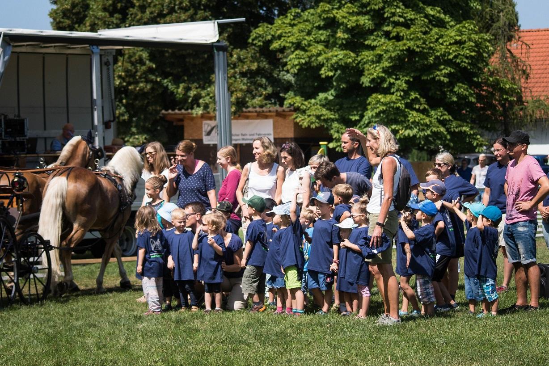 PfuKeV-Projekt 10.000 Holzpferde für Kindergärten - RFV Renningen-Malmsheim (1)