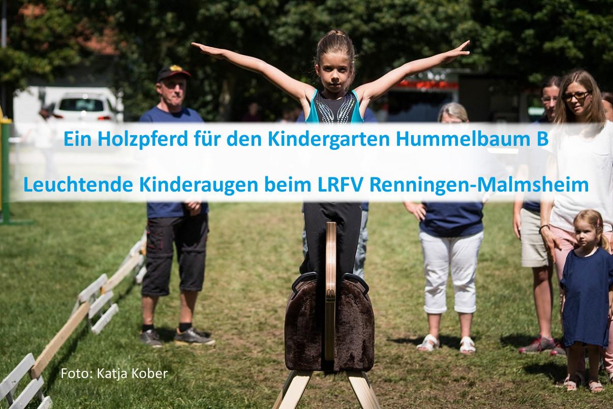 PfuKeV-Projekt 10.000 Holzpferde für Kindergärten - RFV Renningen-Malmsheim (2)