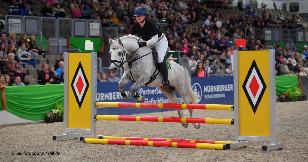 Faszination Pferd Nürnberg 2019 Connemara Gestüt - Fotoagentur Dill - Rainer Dill (II)