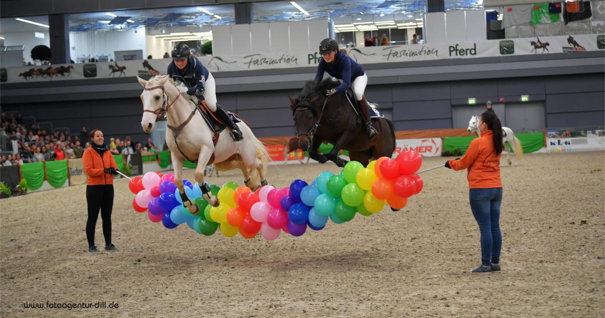 Faszination Pferd Nürnberg 2019 Connemara Gestüt - Fotoagentur Dill - Rainer Dill (VII)