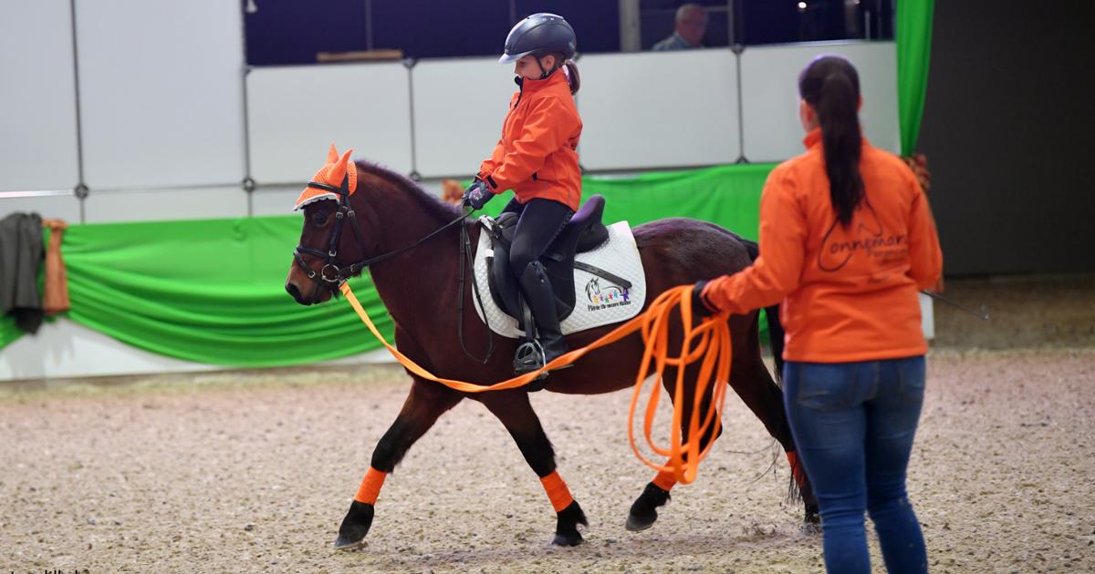 Faszination Pferd Nürnberg 2019 Pferde für unsere Kinder e.V - Fotoagentur Dill - Rainer Dill (III)