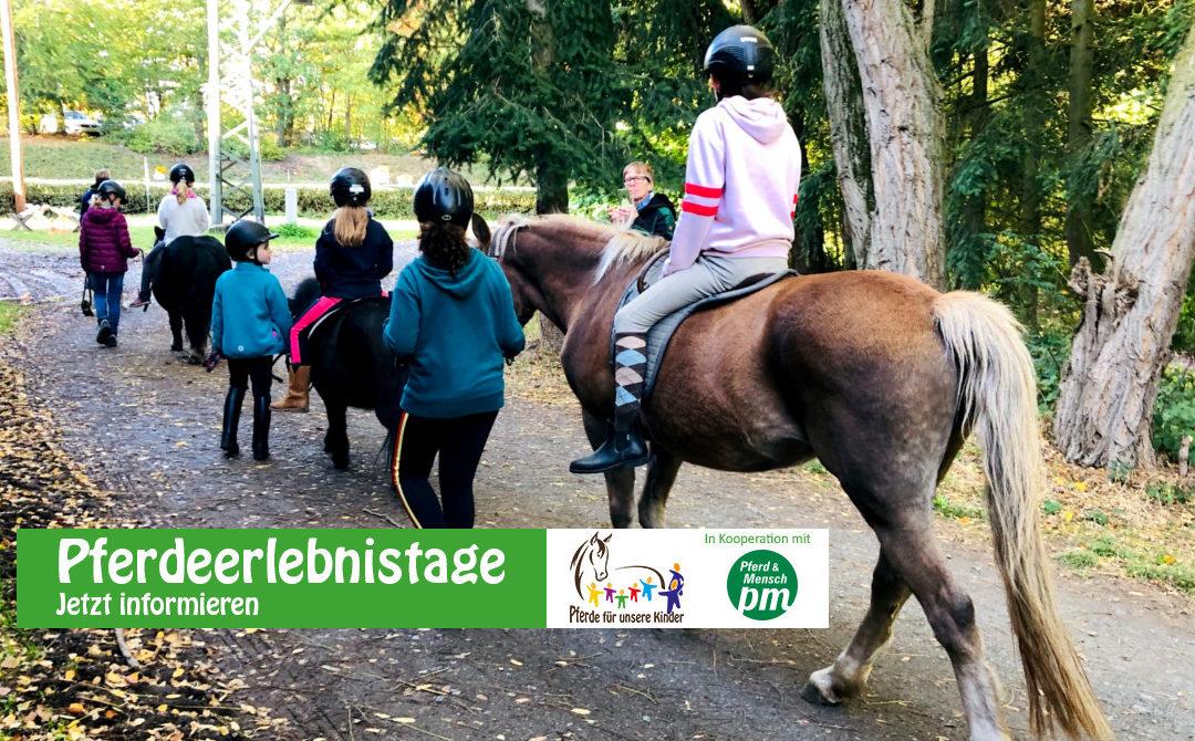 Pferdeerlebnistag im Reiterverein Bissingen