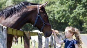Pferde für unsere Kindere.V. Mädchen und Pferd - c Thomas Hellmann